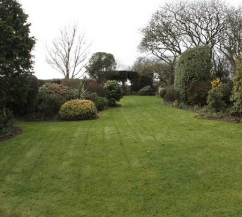 Delightful mature cottage garden,and lawn at May's Cottage, a luxury holiday cottage near Port Isaac