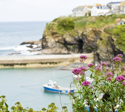 Visit Port Isaac's harbour when choosing a Latitude 50 holiday cottage in Port Isaac